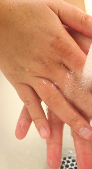 Niechciane bakterie w domu